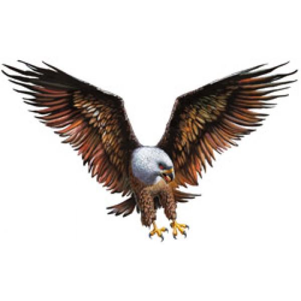 Орел № 8 (50х70)