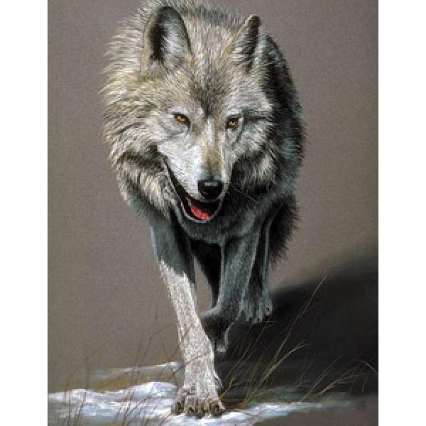 Бегущий волк (разм. 50х35)