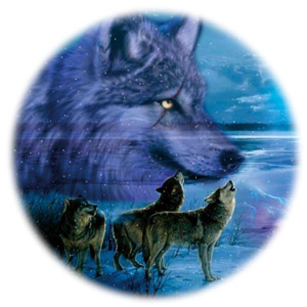 Волк № 2(стая) Ø56 см (на запаску)