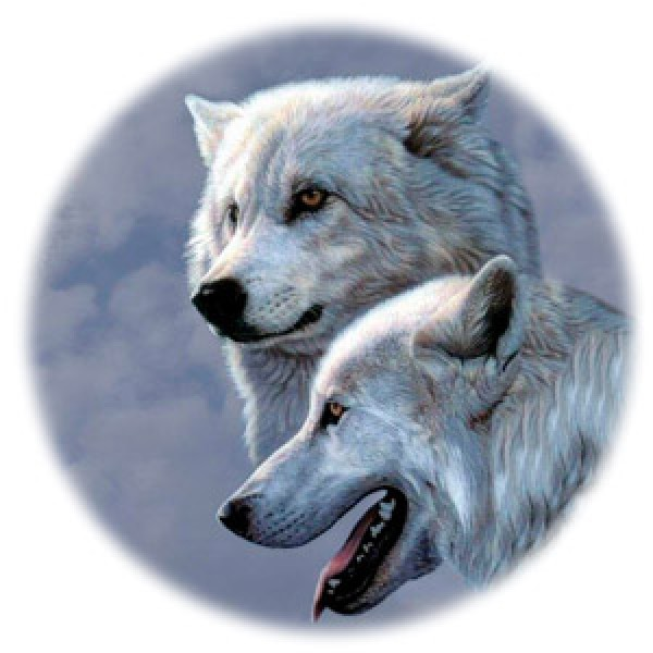 Волк №3 Ø56 см (на запаску)