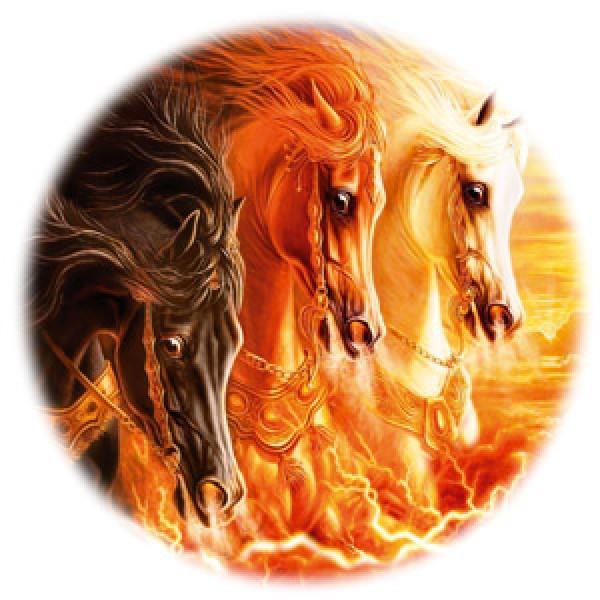 Лошади № 1 Ø56 см (на запаску)