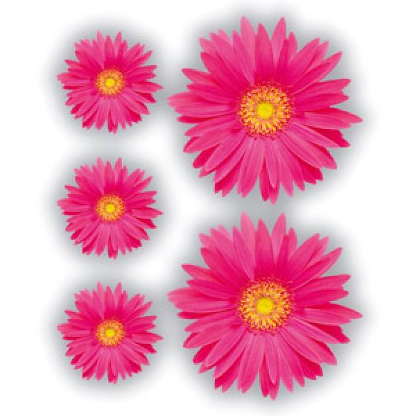 Герберы розовые(разм. 24х27)