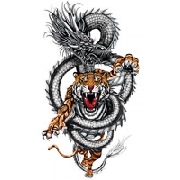 дракон с тигром 48х28