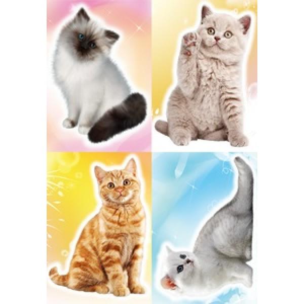 Котики (разм. 35х50)