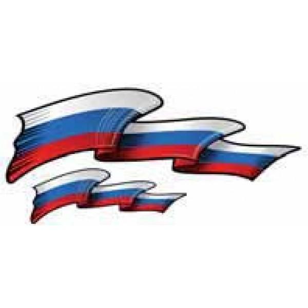 "Брызги ""RUSSIA-флаг"" ( комплект 2+2)(16*34см+5*15)"